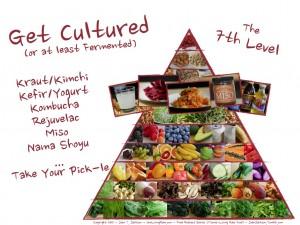 ferment pyramid