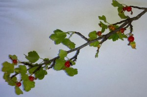 A currant branch.