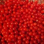 cherries_clean