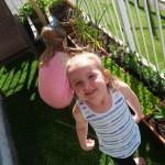 Garden Gnomes!